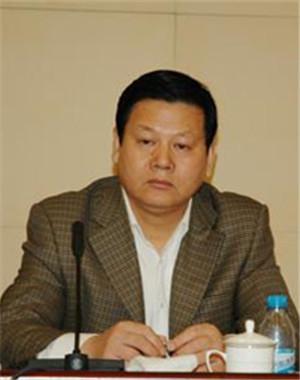 高级发展顾问<br>张昭贤